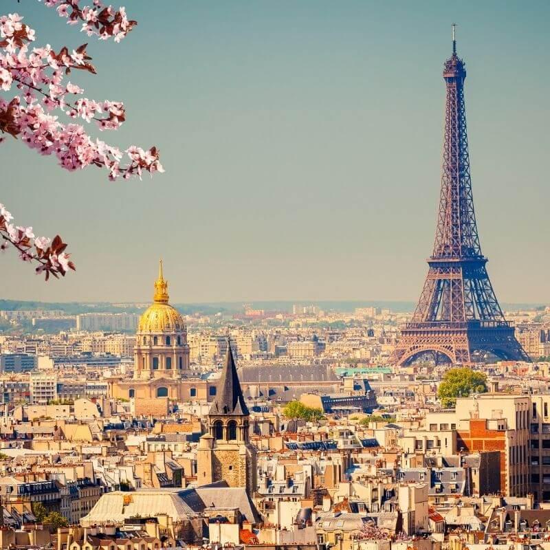 Sainderma Paris office